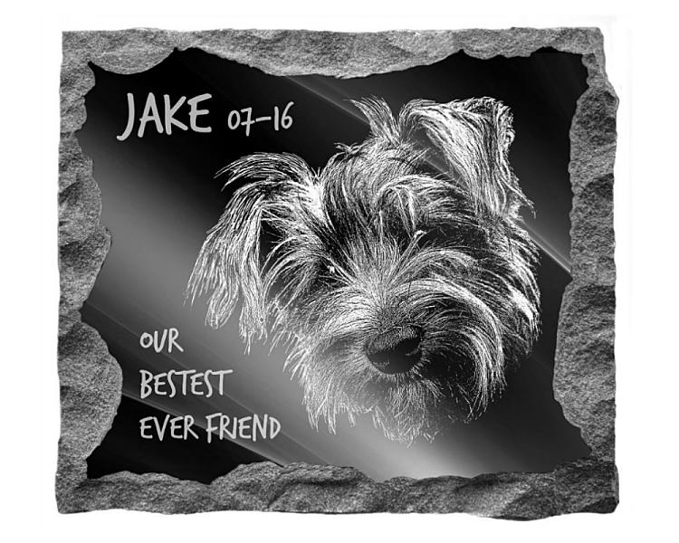 Australian Terrier Dog Memorial. Image and inscription etched on polished black granite with a natural outer edge chisel finish. Plaque size: 16