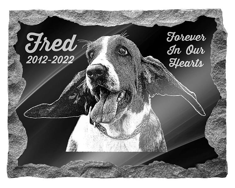 Basset Hound Dog Memorial. Image and inscription etched on polished black granite with a natural outer edge chisel finish. Plaque size: 22