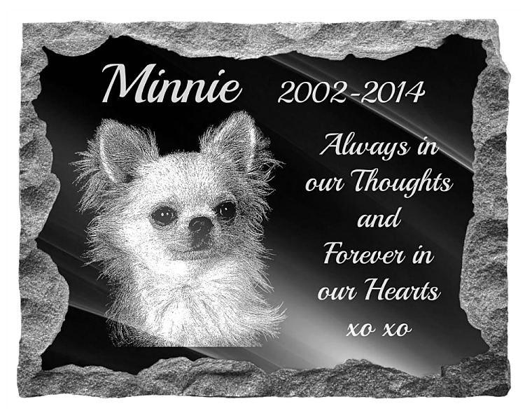 Chihuahua Dog Memorial. Image and inscription etched on polished black granite with a natural outer edge chisel finish. Plaque size: 20