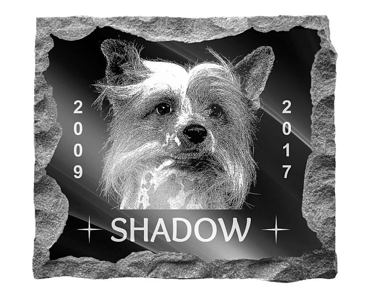 Chinese Crested Dog Memorial. Image and inscription etched on polished black granite with a natural outer edge chisel finish. Plaque size: 16