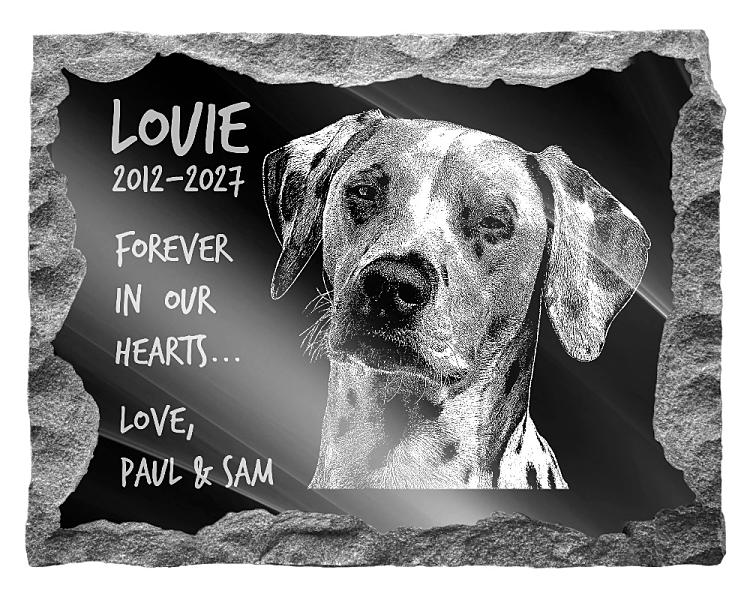 Dalmatian Dog Memorial. Image and inscription etched on polished black granite with a natural outer edge chisel finish. Plaque size: 20