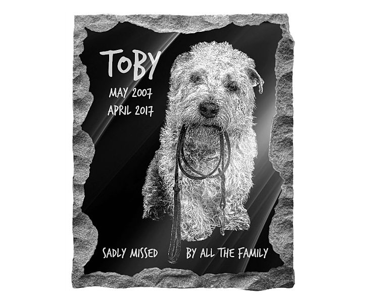 Glen of Imaal Terrier Dog Memorial. Image and inscription etched on polished black granite with a natural outer edge chisel finish. Plaque size: 14