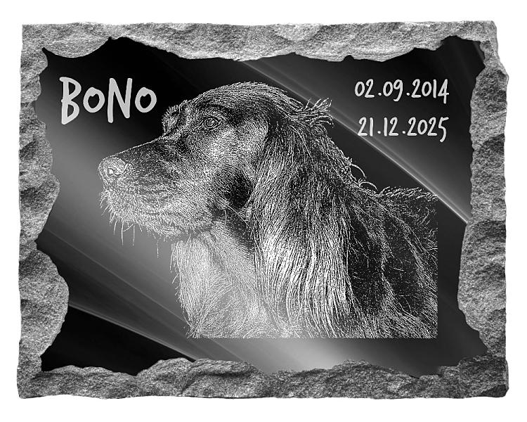 Irish Red Setter Dog Memorial. Image and inscription etched on polished black granite with a natural outer edge chisel finish. Plaque size: 20