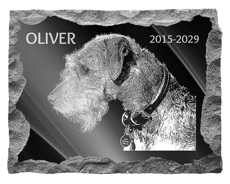 Lakeland Terrier Dog Memorial. Image and inscription etched on polished black granite with a natural outer edge chisel finish. Plaque size: 20
