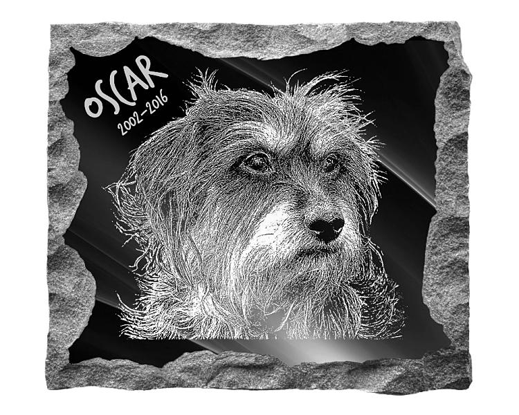 Maltese Terrier Dog Memorial. Image and inscription etched on polished black granite with a natural outer edge chisel finish. Plaque size: 16