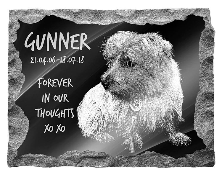 Norfolk Terrier Dog Memorial. Image and inscription etched on polished black granite with a natural outer edge chisel finish. Plaque size: 20