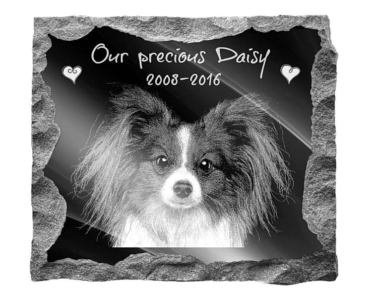 Papillion Dog Memorial. Image and inscription etched on polished black granite with a natural outer edge chisel finish. Plaque size: 16