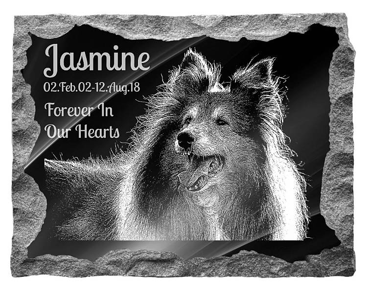 Rough Collie Dog Memorial. Image and inscription etched on polished black granite with a natural outer edge chisel finish. Plaque size: 20