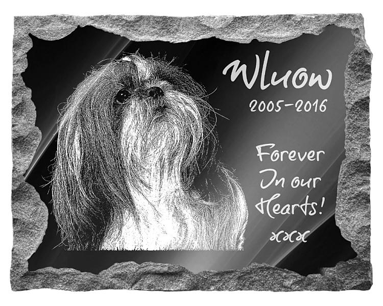 Shih Tzu Dog Memorial. Image and inscription etched on polished black granite with a natural outer edge chisel finish. Plaque size: 20