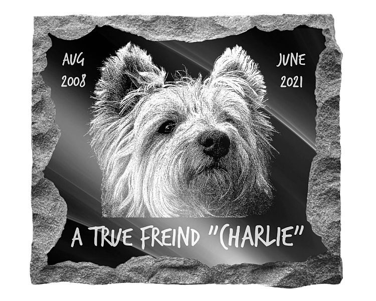 West Highland Terrier Dog Memorial. Image and inscription etched on polished black granite with a natural outer edge chisel finish. Plaque size: 16