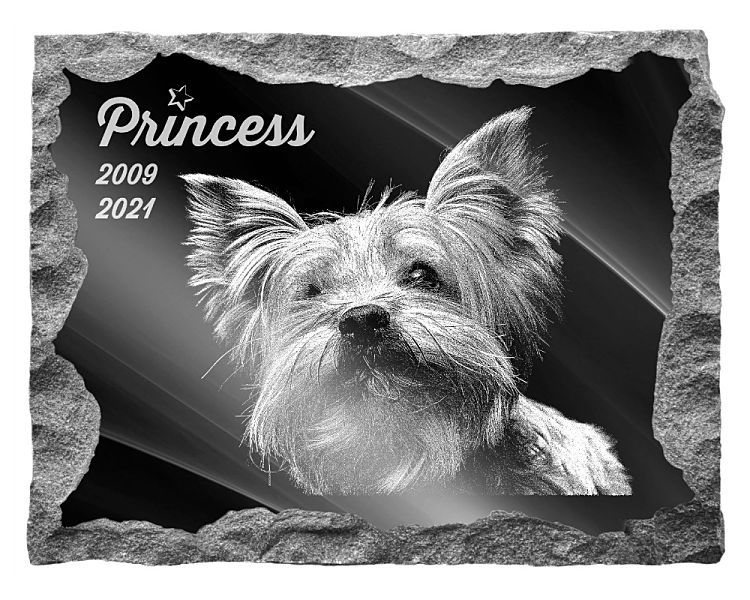 Yorkshire Terrier Dog Memorial. Image and inscription etched on polished black granite with a natural outer edge chisel finish. Plaque size: 20